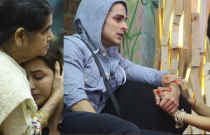 Arshi Kahn Blame Shilpa   and Priyank  Girlfriend Break up