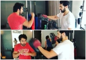 Varun Dhawan Learning Boxing With Dino Morea